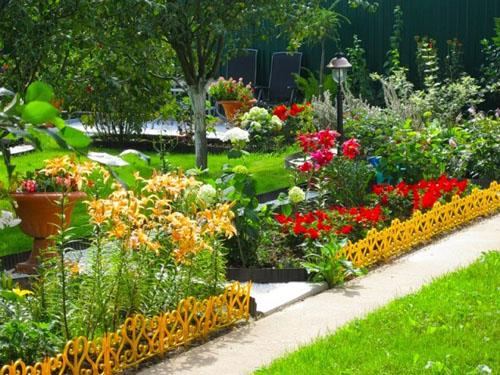 Удобрения для цветов: самые эффективные способы