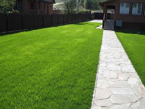 Удобрения для газона - секрет подкормки весной и осенью