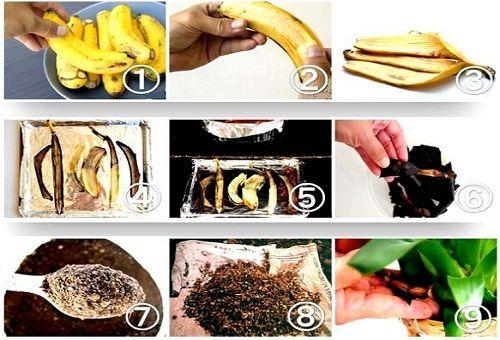 удобрения из кожуры банана
