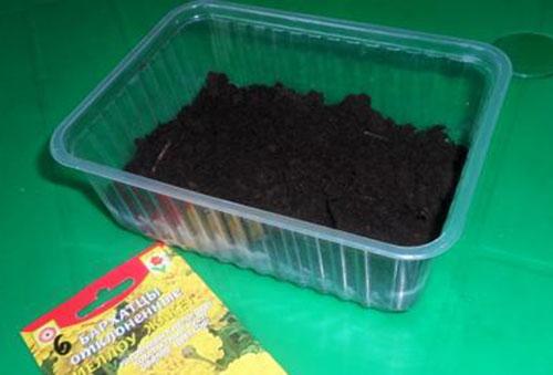 Подготовка почвы для рассады бархатцев