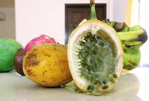Плод желтой маракуйи