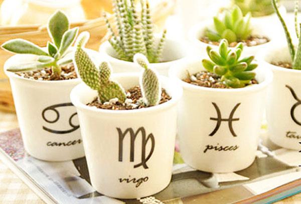 Плошки со знаками зодиака для растений