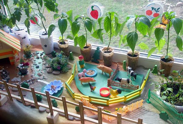 Огород в детском саду на подоконнике