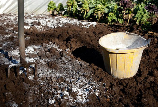 Нормализация кислотности почвы