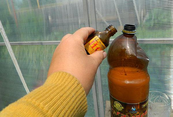 Раствор йода для полива огурцов в теплице