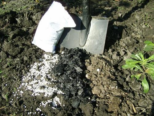 Польза азотных удобрений