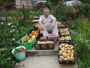 Результат обработки земли куриным пометом