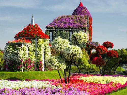 """Удобрение """"AVA"""" для выращивания цветов"""