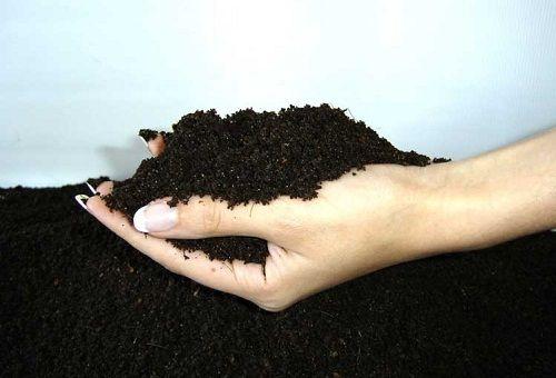 органическое удобрение в руках