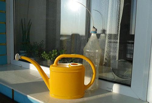 Лейка для полива рассады