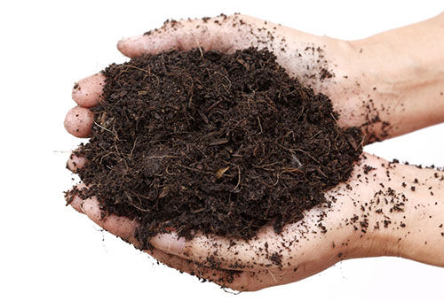 Почва для цветов