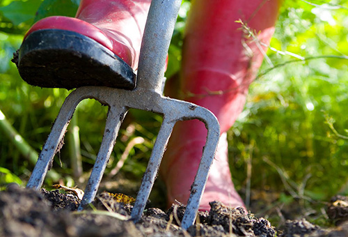 Подготовка почвы для цветов
