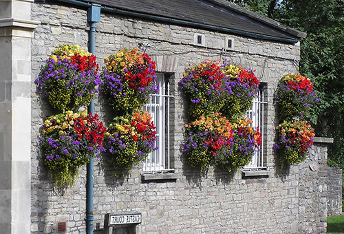 Разноцветные цветы в кашпо на фасаде дома