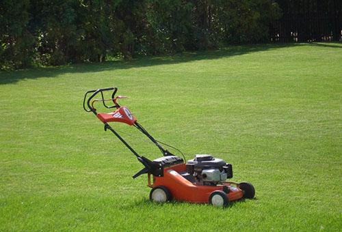Газонокосилка и подстриженный газон