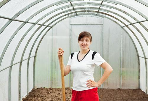 Подготовка почвы в теплице