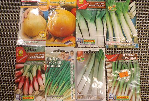 Семена разных сортов лука