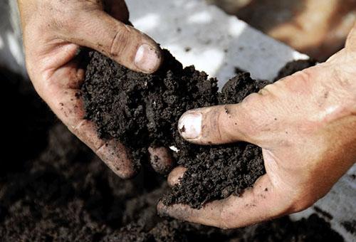 Подготовка почвы