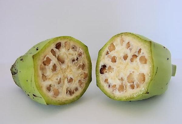 Плод банана с семенами