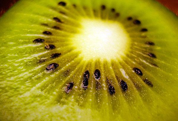Срез плода киви