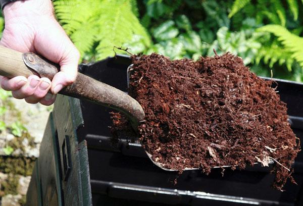 Подготовка почвы к посеву