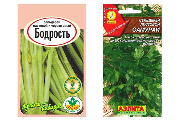Семена сельдерея сортов Бодрость и Самурай