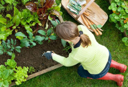 Девушка сажает растения