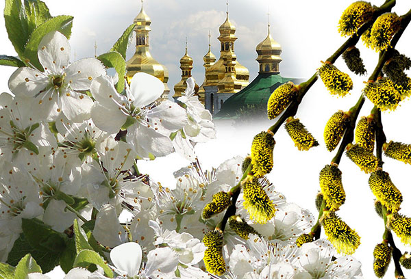Цветущие деревья и православный храм