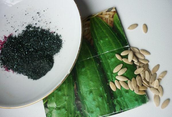Семена огурцов и кристаллы марганцовки
