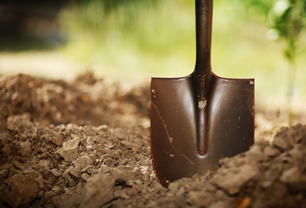Лопата в земле
