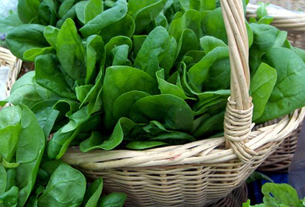 Корзина с листьями шпината
