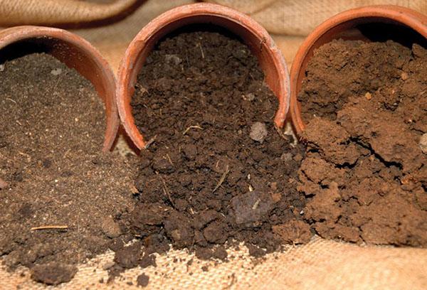 Разные виды почвы