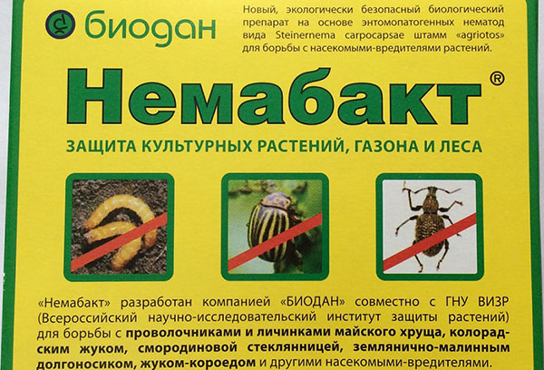 """Препарат """"Немабакт"""" для защиты от вредителей"""