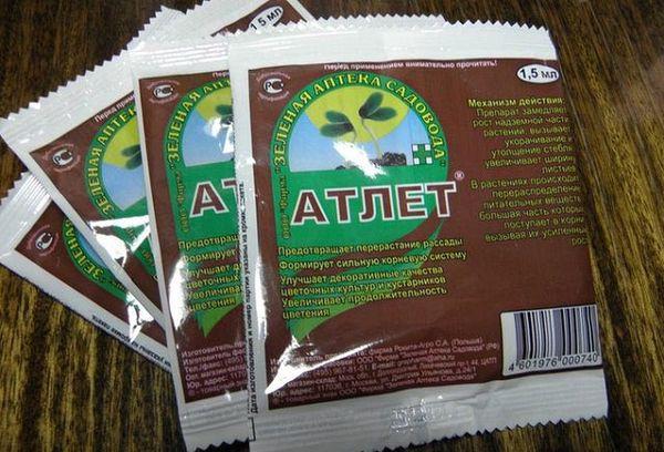 Чем интересен препарат «Атлет» для рассады