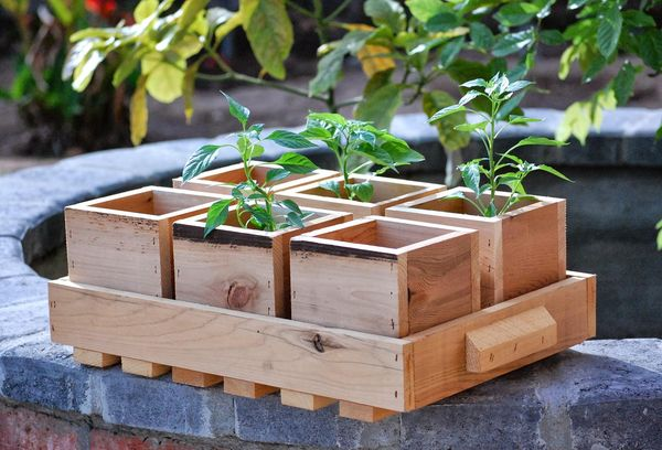 Деревянный ящик для растений