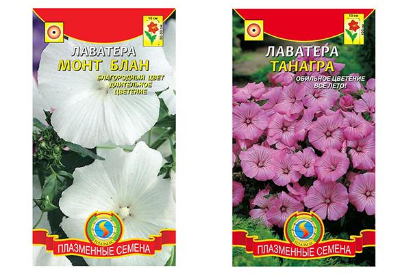 Пакеты с семенами лаватеры