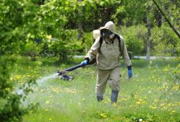 Опрыскивание участка от комаров
