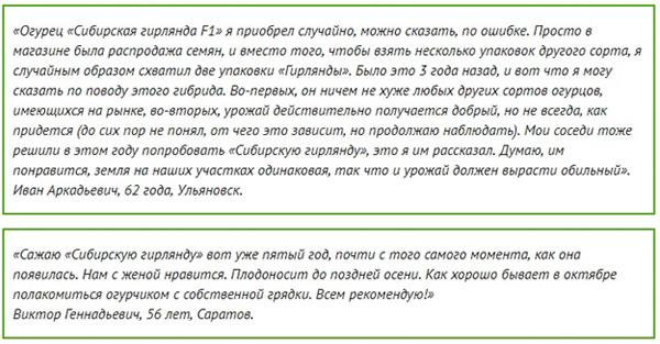 Отзывы о сорте Сибирская гирлянда