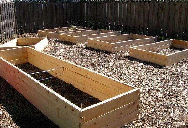 Ящики для выращивания овощей