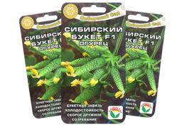 Семена огурцов Сибирский букет F1