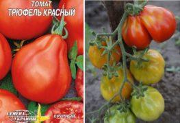 Трюфельные томаты семена