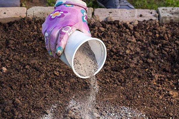 Удобрение почвы золой