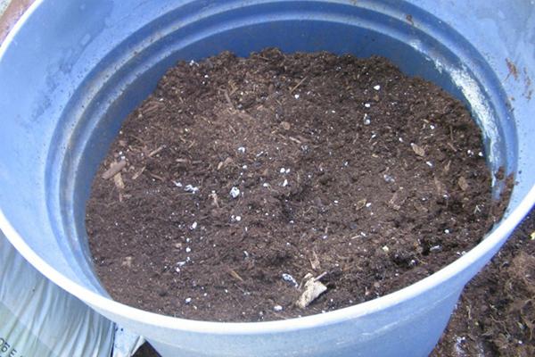 Почва в бочке