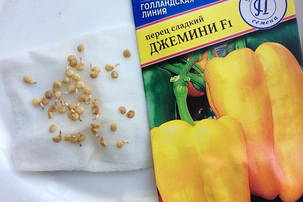 Пророщенные семена перца