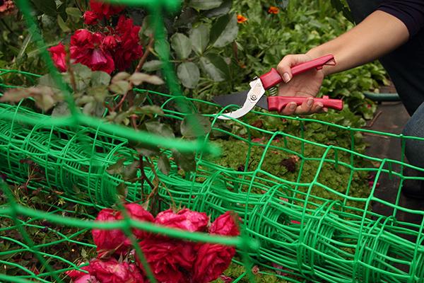 Пластиковая сетка для подвязки растений
