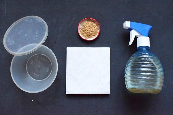 Все необходимое для получения микрозелени