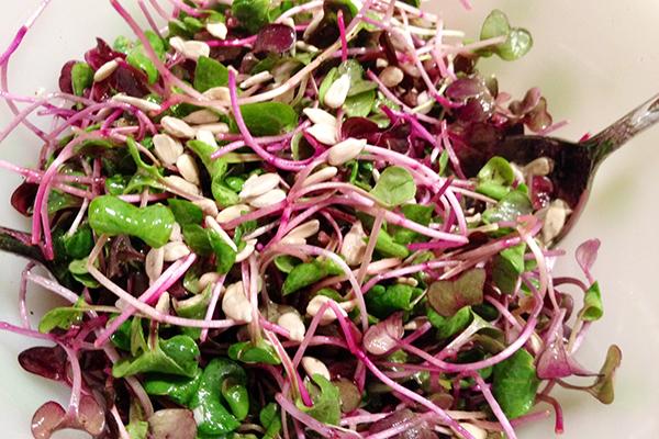 Салат с микрозеленью редиса