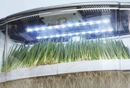 Автоматизированное оборудование для выращивания микрозелени
