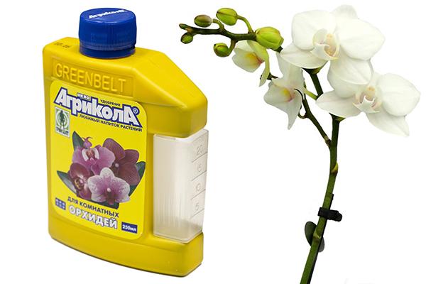 Жидкое удобрение «Агрикола для орхидей»