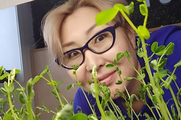 Женщина выращивает микрозелень гороха