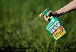 Опрыскивание травы гербицидом
